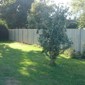 installation of close board fence Ipswich suffolk