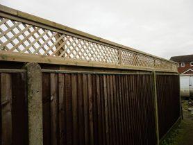 Norfolk fencing