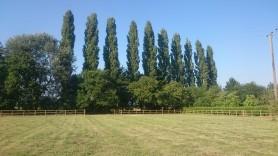 paddock post and rail fence